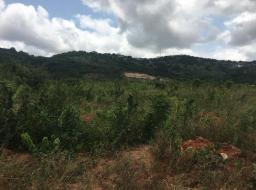 land for sale at Ayi Mensah