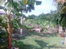 land for sale at Haatso plot size 100/100