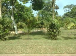 land for sale at Peduase Presidential Lodge