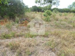 land for sale at Ashaiman Timber Market